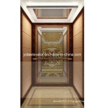 Ascenseur de passager avec placage en cuir du fabricant professionnel