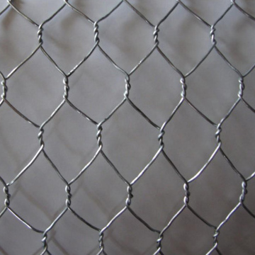 Profesional Galvanized Hexagonal Wire Mesh Netting