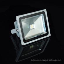 Luz de inundación del LED 20W