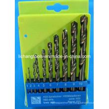 10PCS HSS Twist Drill Bit Set mit Kunststoffpaket