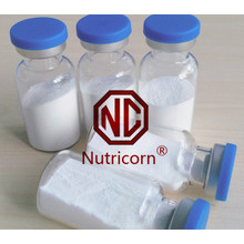 Economical Cosmetic Garde & Food Grade Sodium Hyaluronate Proveedor