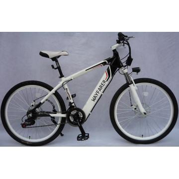 Electric Bike (Built - in Hidden Battery)