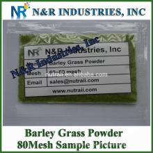 Poudre Formulaire Organic Organic Barley Grass Powder 80mesh à 200mesh sans dextrine