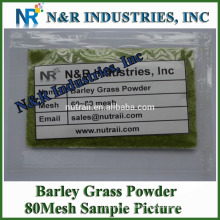 Powder Form Organic Barley Grass Powder 80mesh to 200mesh without dextrin