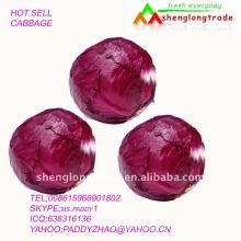 O preço baixo 2011 chinês do repolho vermelho vende pela fábrica