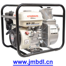 Stable Auto Water Pump (WP30)