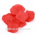 Pétale de rose rouge tirant des confettis Cannon