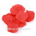 Красный Лепесток Розы Ручной Съемки Конфетти