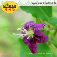 Alimento natural nativo Wolfberry vermelho