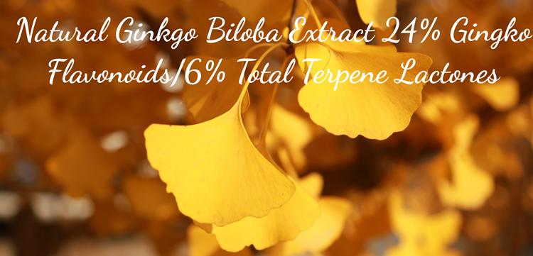 Ginkgo Biloba Extract4