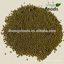 Différents types de haricots secs