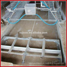 Máquina automática de eliminación de estiércol / Equipo de granja de aves de corral