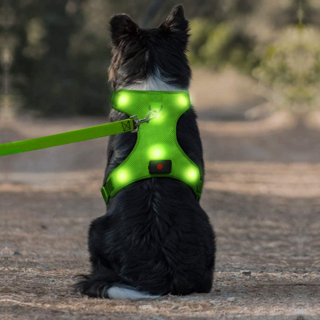 Usb Rechargeable No Pull Pet Vest Harness