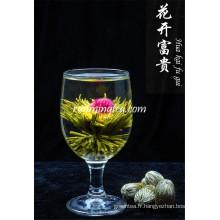 Jin Zhan Fu Gui Thé vert fleurissant artistique