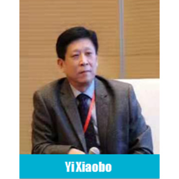 Secretaris-generaal van China Lead Acid Battery Association