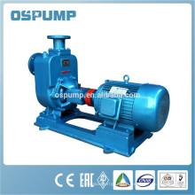 ZW pompe d'irrigation de moteur électrique