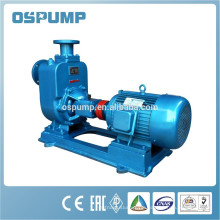 ZW electric motor irrigation pump