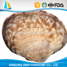 Branquear, curto, necked, clam, carne, alimento, Pronto, comer