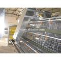jaula de capa de sistema de crianza de aves automática