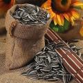 Wholesale marché des graines de tournesol prix