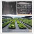 Tela de alta calidad del control de malas hierbas / tela del paño grueso y suave de la barrera de la mala hierba