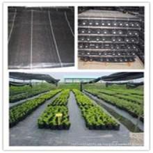 Tela tejida del paisaje de la membrana de la cubierta de tierra del control de malas hierbas del polipropileno (PP) del 100% de la hendidura