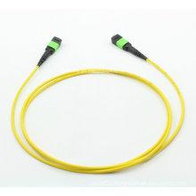 MTP/MPO Singlemode 12cores Fiber Optic Patch-Cord