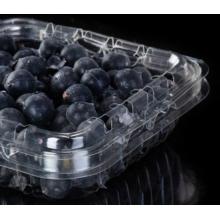 Boîte de myrtilles en plastique pour supermarché de fruits