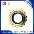 Rolamento de rolos cilíndricos para turbinas a gás Tfn (512533)