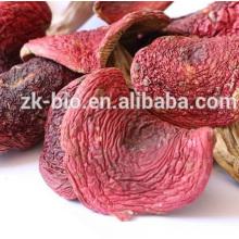Wholesale Cogumelo Vermelho Selvagem Seco