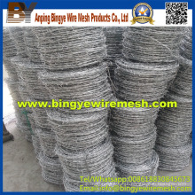 Professional Manufacture Steel Barbed Wire From Anping