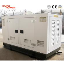 20kVA ~ 200kVA Gerador Ricardo / Conjunto Gerador Diesel / Gás Diesel (HF80R2)