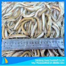Délicieuse fraîche fraîche fraîche dans le poisson excellent prix