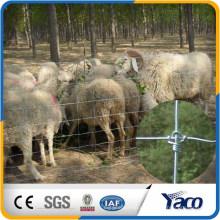 Fixed-Knot Woven Wire (13/48/6 - 330 'Rolle) für Tierzaun / Schafzaun