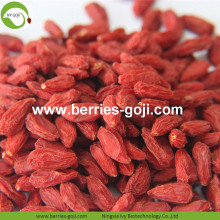 Dieta cosmetica Acquista Bulk Super Conventional Goji Berries