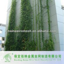 Nueva red decorativa verde del cable de la pared de la llegada