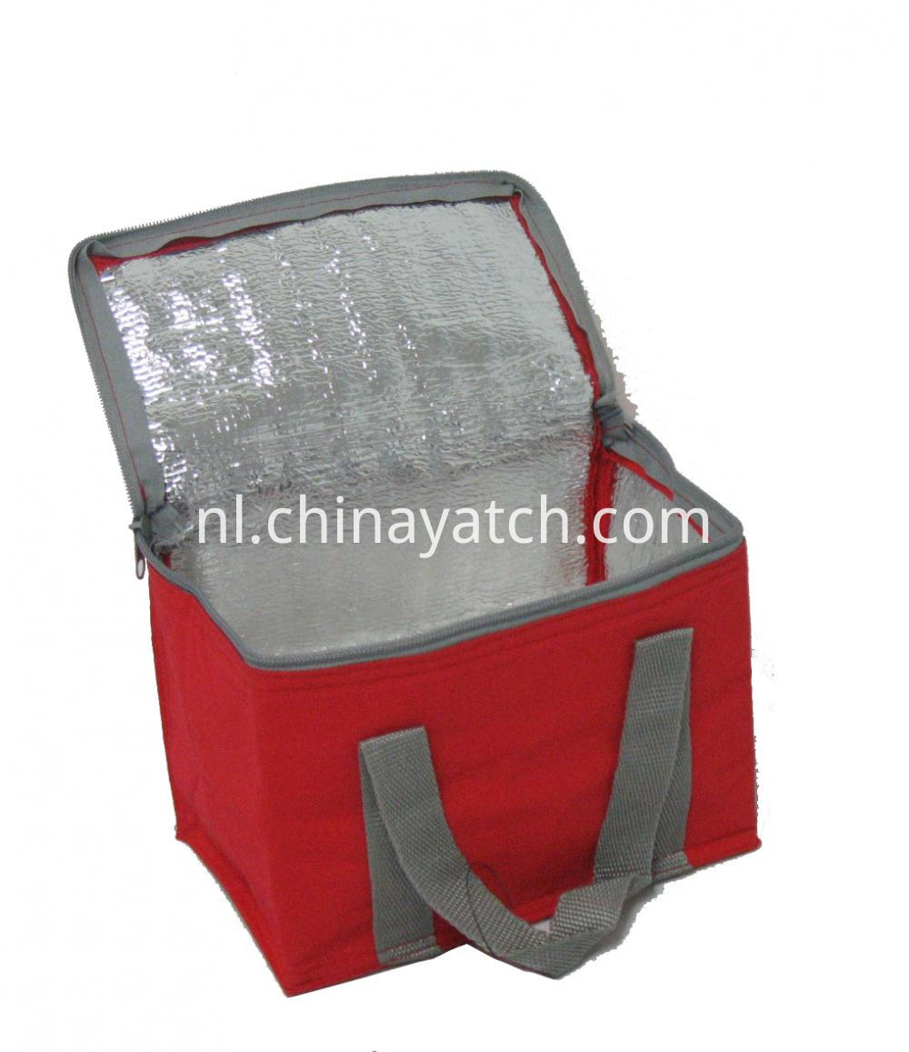 Medium Insulated Lunch Cooler Bag