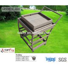 new design hot sale garden poly rattan trolley