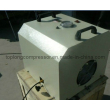 Oil Free Oilless Air Booster Gas Booster Bomba de enchimento do compressor de alta pressão (Thv-0.07 / 300)