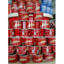 70g*100 18%-20% Canned Tomato Paste
