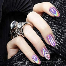 Holographic Powder Rainbow Chrome Nails Powder Manicure Pigment Top Grade