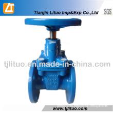 Válvula de compuerta de hierro dúctil estándar DIN 3 pulgadas