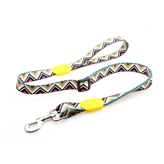 Full Color Polyester Dog Leash