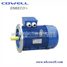 Three-Phase Induction Electrical Motor with High Quality
