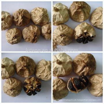 Natürlicher fermentierter schwarzer Knoblauch Japanischer schwarzer Knoblauch