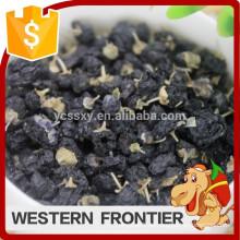 Künstlicher Anbau neue Ernte schwarze Goji-Beere