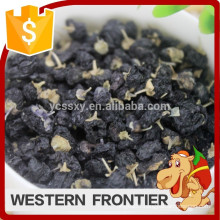 Artificial cultivation new crop black goji berry