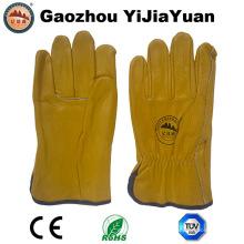 Gold Rindsleder Korn Leder Arbeit Fahrer Handschuhe
