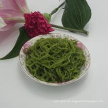 Espinacas sanas de Shirataki de los tallarines del vegano de la espinaca para el vegetariano