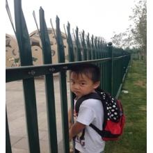 Galvanizli Palisade çit